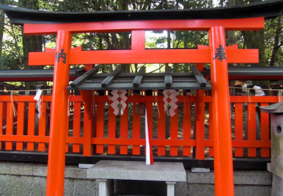 fushimiinaritaisya_nanafushigi 13