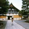 建仁寺 ~美術界に大きな影響を与えた京都最古の禅寺
