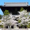 京の七不思議 その15『金戒光明寺の七不思議』