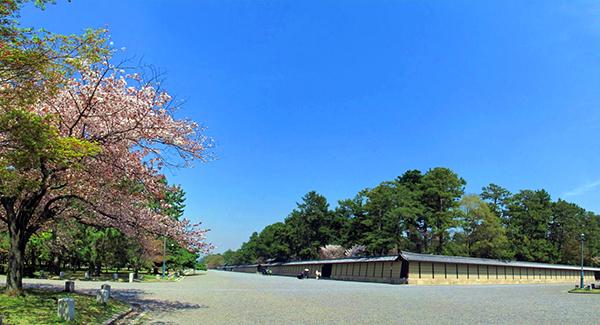 kyoto_gyoen nanafushigi 01