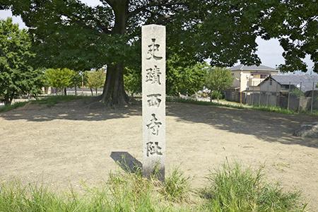 saiji 06