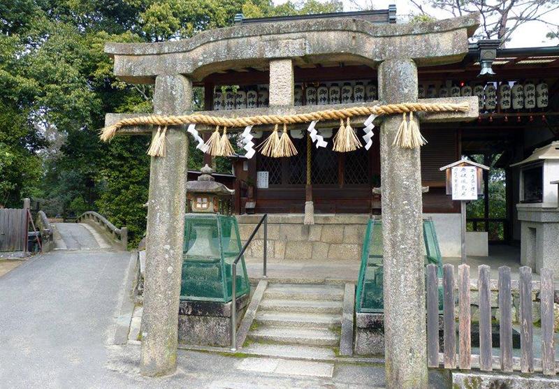 torii 03