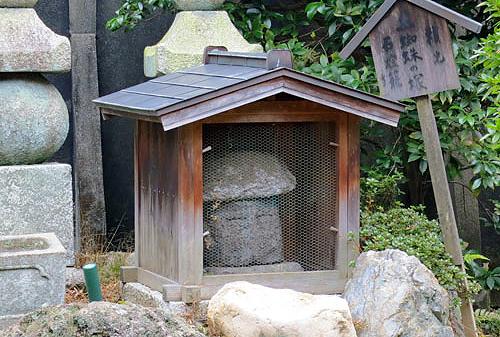tsuchigumo 05
