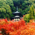 京の七不思議 その8『永観堂の七不思議』