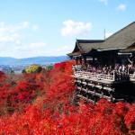 京の七不思議 その6『清水寺の七不思議』