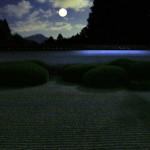 正伝寺の月見 ~動く日本画の世界
