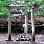 京都三珍鳥居 ~謎の3つの鳥居