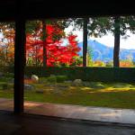 圓通寺 ~最後の借景庭園